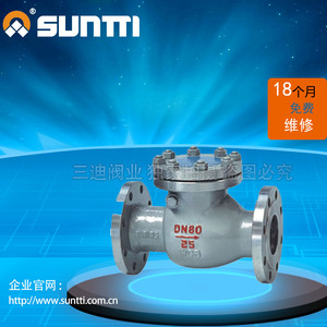 National Standard Cast Steel Swing Check Valve