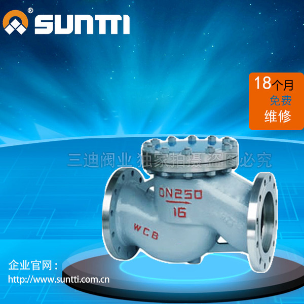 National Standard Cast Steel Lift Check Valve