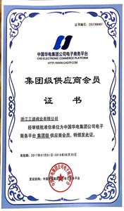 Group Supplier Certificate